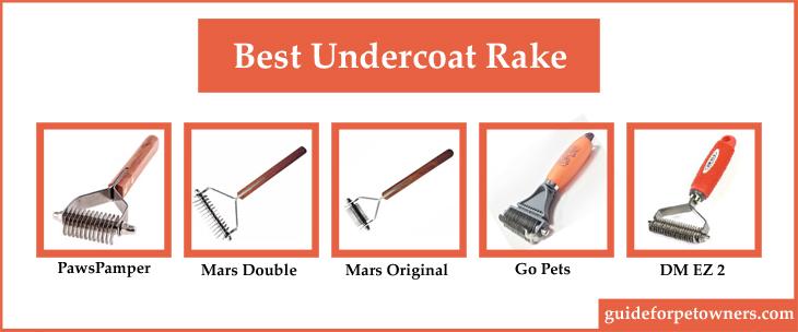 Best Undercoat Rake