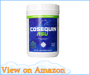 Nutramax Cosequin ASU Equine Powder review